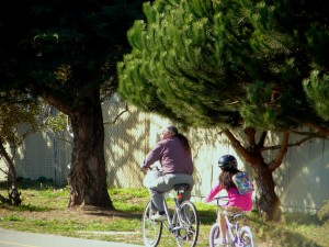 Bike to school with grandfather
